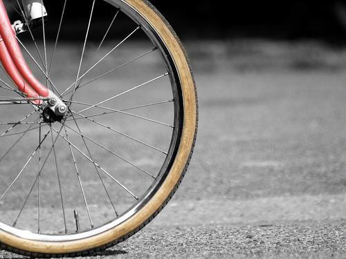 Os propongo una marcha ciclista