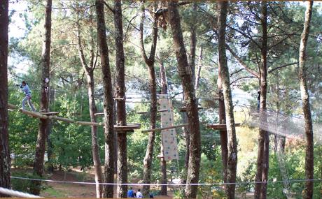 Parque Multiaventura en Marín: Ecoparque