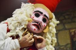 vigo carnaval 2014