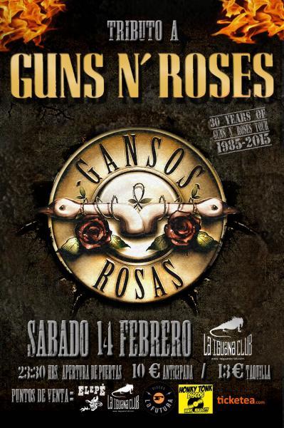 Concierto de Gansos Rosas