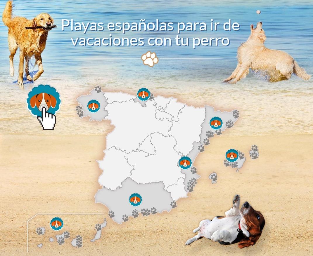 Playas-perros-España-2015