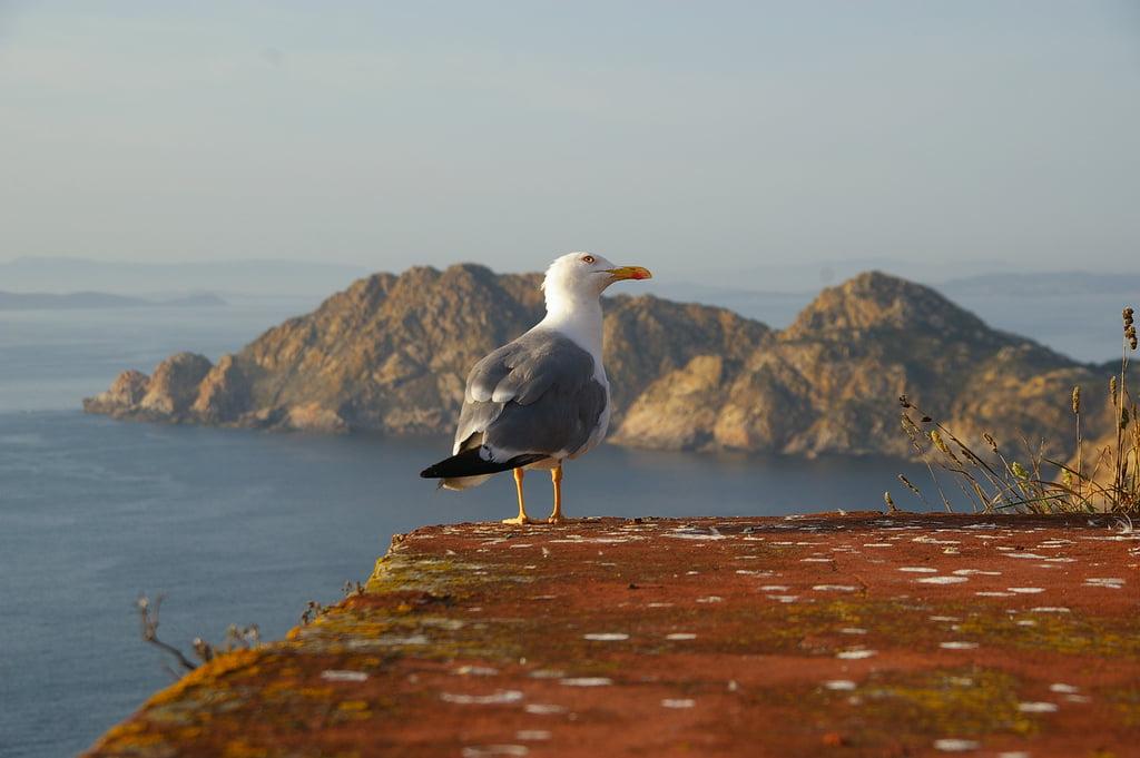 Visita las Islas Cíes en Semana Santa