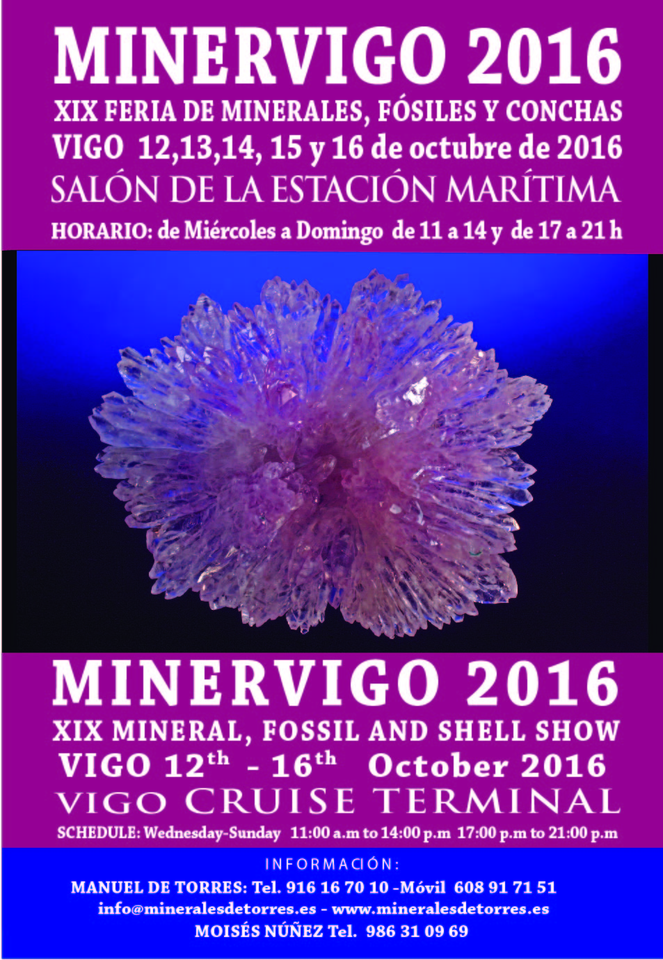 carteles minervigo 2016-01