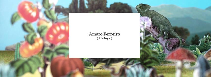Amaro Ferreiro en Progreso 41