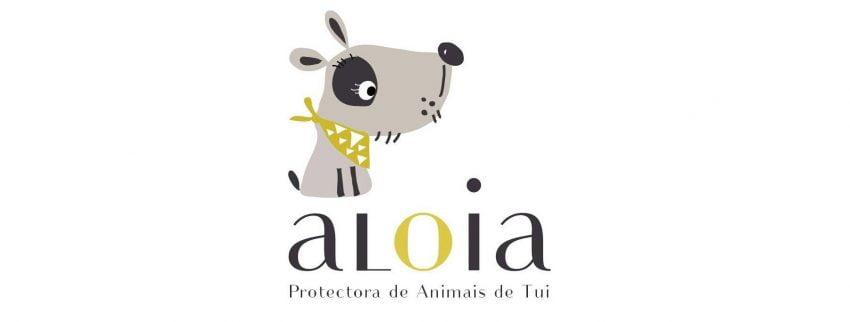 Todos los domingos del año tienes la oportunidad de llevar de paseo a los perros de la Protectora Aloia de Tui