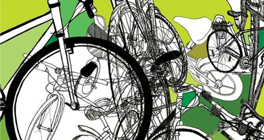 a pedaliña