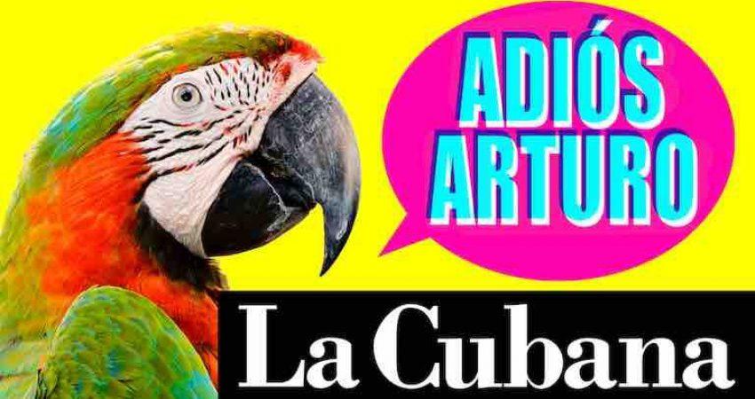 El próximo jueves 26 de septiembre al domingo 29 se representará la nueva propuesta de La Cubana,