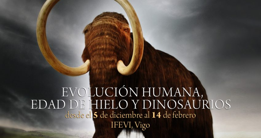 cabeceraEvolucion