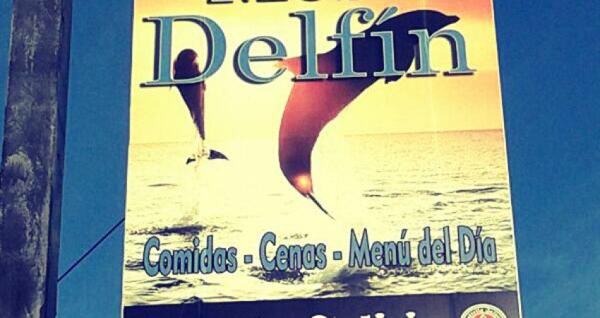 cartel delfín